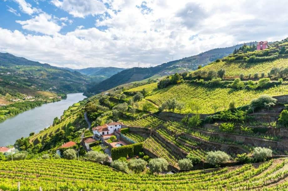 Douro Valley Cruise