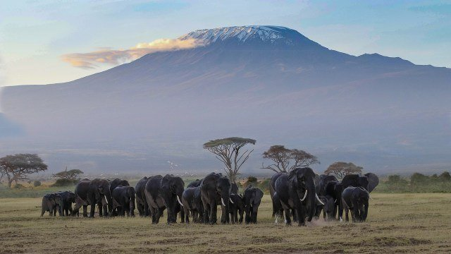 Things to do Kilimanjaro